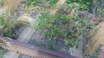 Plants growing in the tracks is a very Western theme, so maybe it's that ...